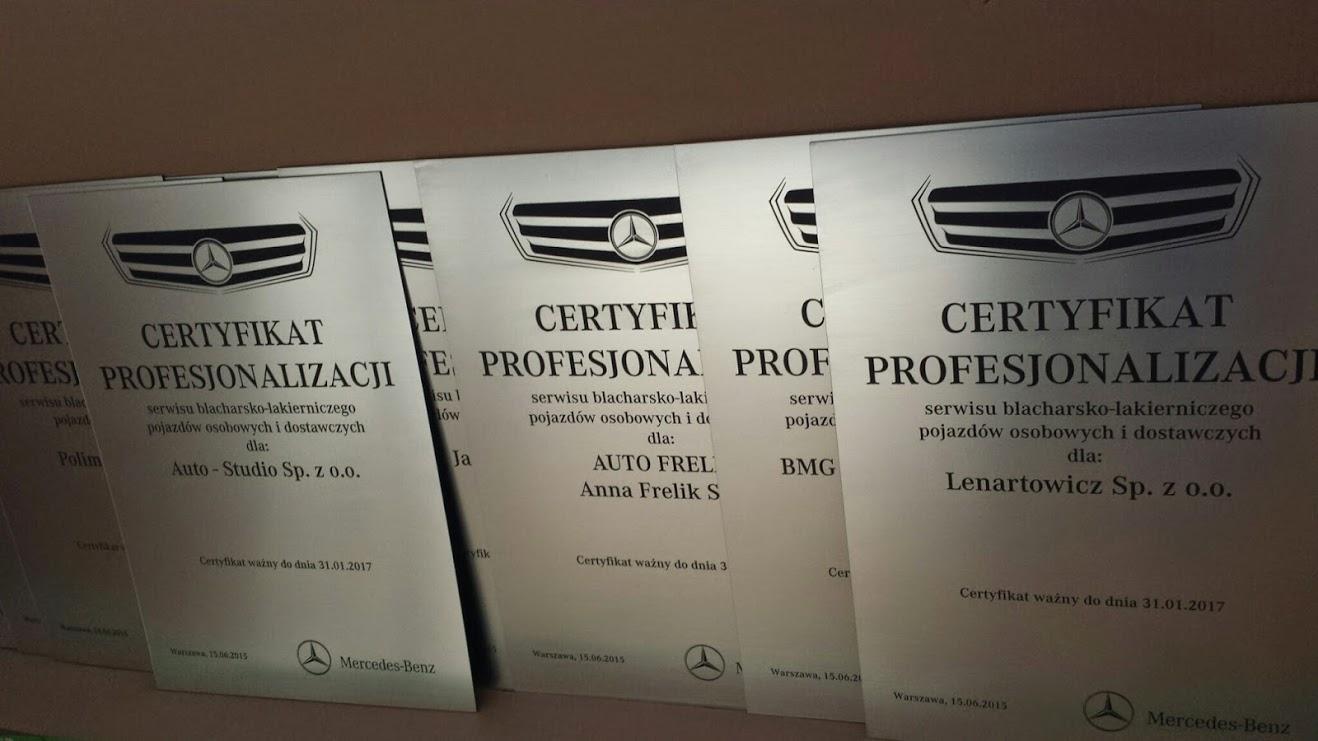 Certyfikat Profesjonalizacji